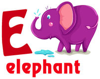 Animal alphabet E. Illustration of isolated animal alphabet E with elephant Stock Images