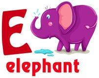 Animal alphabet E. Illustration of isolated animal alphabet E with elephant Stock Images