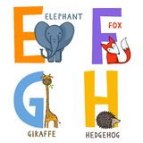 Animal Alphabet E, F, G and H. English animal alphabet E, F, G and H letters with cute cartoon elephant, fox, giraffe and hedgehog vector illustration