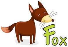 Animal alphabet F for fox. Illustration of isolated animal alphabet F for fox Stock Images