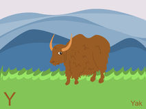 Animal alphabet flash card, Y for yak Royalty Free Stock Photos
