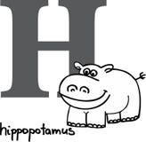 Animal alphabet H (hippo). Animal alphabet - letter H (hippo Stock Photo
