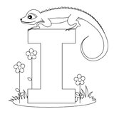 Animal Alphabet I Coloring page. Illustration of alphabet letter I with a cute little Iguana with beautiful flowers isolated on white background. Animal alphabet Royalty Free Stock Images