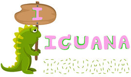 Animal alphabet I with iguana Stock Photography