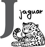 Animal alphabet J (jaguar) Royalty Free Stock Photo