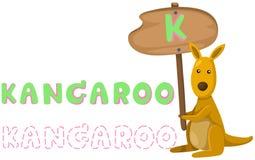 Animal alphabet k with kangaroo Stock Images