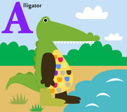 Animal alphabet for the kids: a for the Alligator Royalty Free Stock Images