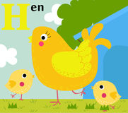 Animal alphabet for the kids: H for the Hen Royalty Free Stock Photography
