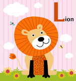 Animal alphabet for the kids: L for the Lion Royalty Free Stock Photos