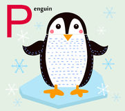 Animal alphabet for the kids: P for the Penguin Stock Photography