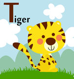Animal alphabet for the kids: T for the Tiger Royalty Free Stock Photos