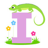 Animal alphabet letter I. Illustration of alphabet letter I with a cute little Iguana with beautiful flowers isolated on white background. I is for Iguana Stock Images