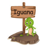Animal alphabet letter I for iguana Royalty Free Stock Photo