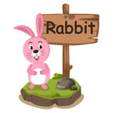 Animal alphabet letter R for rabbit Stock Images