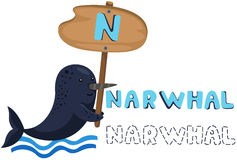 Animal alphabet n with narwhal Stock Photography