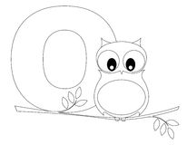 Animal Alphabet O Coloring page. Illustration of alphabet letter O with a cute little Owl sitting on a branch isolated on white background. Coloring book page royalty free illustration