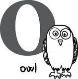 Animal alphabet O (owl) Royalty Free Stock Photo