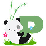 Animal alphabet P. Illustration of alphabet letter P with a cute little panda on grass isolated on white background. P is for Panda royalty free illustration
