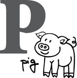 Animal alphabet P (pig) Royalty Free Stock Photo