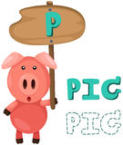 Animal alphabet p with pig Royalty Free Stock Image