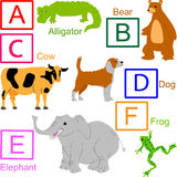 Animal alphabet, part 1 of 4. A to F animals, for other letters please see my port Royalty Free Stock Photo