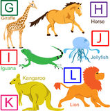Animal alphabet, part 2 of 4. G to L animals, for other letters please see my port Stock Images