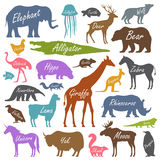 Animal alphabet poster for children Stock Photos