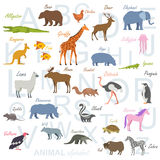 Animal alphabet poster for children. Animal silhouettes with names and letters inside Royalty Free Stock Photos