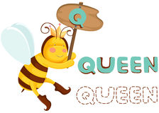 Animal alphabet q with queen bee Royalty Free Stock Photography