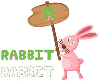 Animal alphabet r with rabbit Royalty Free Stock Images