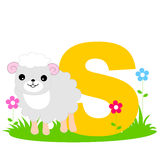 Animal alphabet S. Illustration of alphabet letter S with a cute little sheep on grass isolated on white background. S is for Sheep Royalty Free Stock Image