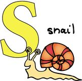 Animal alphabet S (snail) Stock Photography
