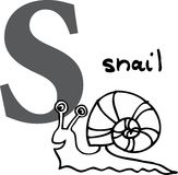 Animal alphabet S (snail) Royalty Free Stock Photography