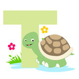 Animal alphabet T. Illustration of alphabet letter T with a cute little turtle isolated on white background. T is for Turtle royalty free illustration