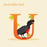 Animal alphabet with umbrella bird. Vector illustration Royalty Free Stock Image