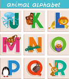 Animal alphabet. Vector Animal Alphabet. Letter. Cartoon. Isolated objects stock illustration