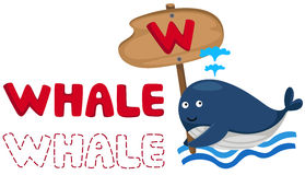 Animal alphabet w with whale Royalty Free Stock Photo