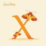 Animal alphabet with xanthie. Vector illustration Stock Images