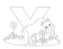 Animal Alphabet Y Coloring page. Illustration of alphabet letter Y with a cute little yak isolated on white background. Y is for Yak Royalty Free Stock Image