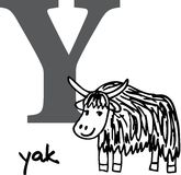 Animal alphabet Y (yak) Stock Photos