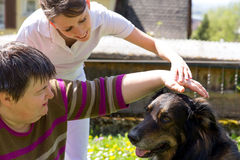 Animal assisted therapy with a dog. Animal assisted therapy with a half breed dog Stock Photos