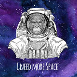 Animal astronaut Gorilla, monkey, ape Frightful animal wearing space suit Galaxy space background with stars and nebula. Animal astronaut wearing space suit Royalty Free Stock Photos
