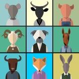 Animal avatar icon set. Royalty Free Stock Photos