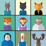 Animal Avatar Icon Set Stock Photos