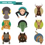 Animal avatars. Vector Illustration Royalty Free Stock Images