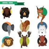 Animal avatars. Vector Illustration Stock Images
