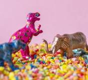 Animal, Background, Birthday stock photos