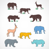 Animal background Stock Photos