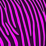 Animal background pattern. Illustration of a pink tiger skin wallpaper Royalty Free Stock Images