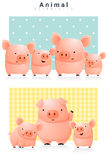 Animal background with Pigs Royalty Free Stock Image